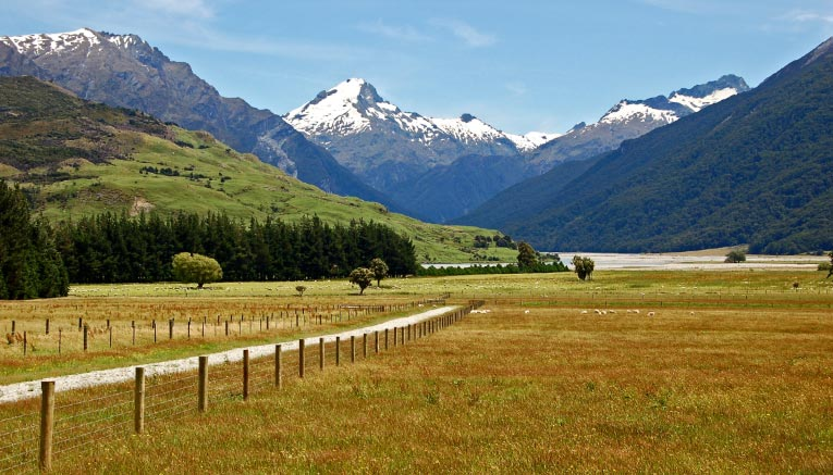 Bnzq-newzealand-biking-6